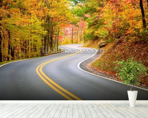 Winding Road wall mural room setting