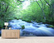 Spring Forest River mural wallpaper living room preview