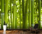Bamboo Trees wall mural kitchen preview