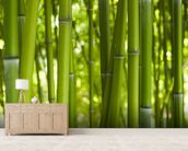 Bamboo Trees wall mural living room preview