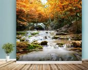 Natural Autumn Waterfall wallpaper mural in-room view