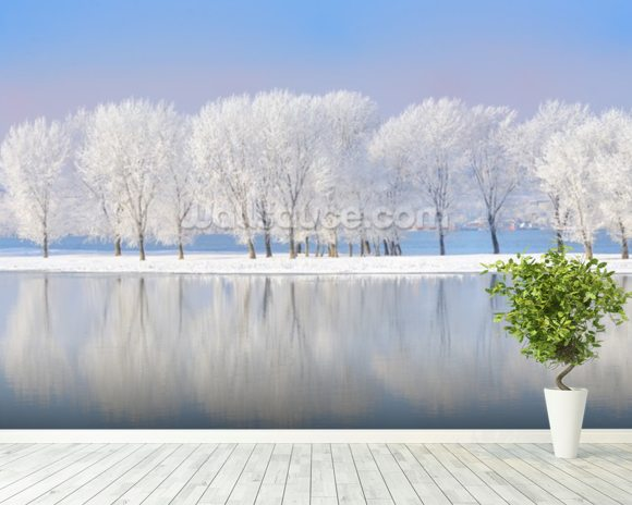 Winter Frost wall mural room setting
