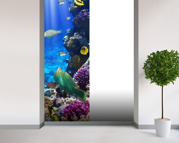 Coral Colony wall mural room setting