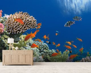 Tropical Fish on Coral Reef wall mural