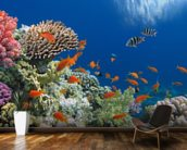 Tropical Fish on Coral Reef wall mural kitchen preview
