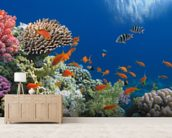 Tropical Fish on Coral Reef wall mural living room preview