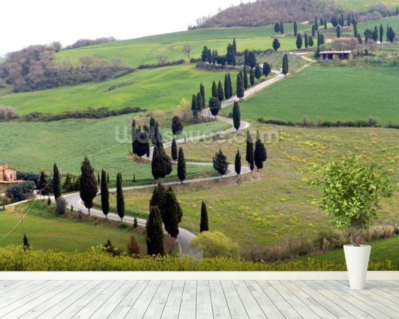 Tuscan Landscape wall mural room setting