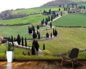 Tuscan Landscape wall mural kitchen preview