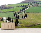 Tuscan Landscape wall mural living room preview