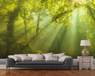 The Forest of Heaven wall mural
