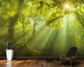 The Forest of Heaven wall mural kitchen preview