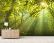 The Forest of Heaven wall mural living room preview