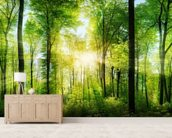 Forest Panoramic with Sunbeams wallpaper mural living room preview