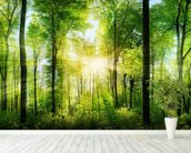Forest Panoramic with Sunbeams wallpaper mural in-room view