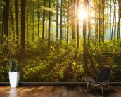 Forest Sunlight mural wallpaper kitchen preview