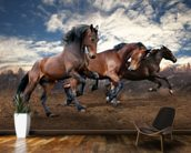 Jumping Bay Horses mural wallpaper kitchen preview