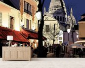 Montmartre in Winter wall mural living room preview