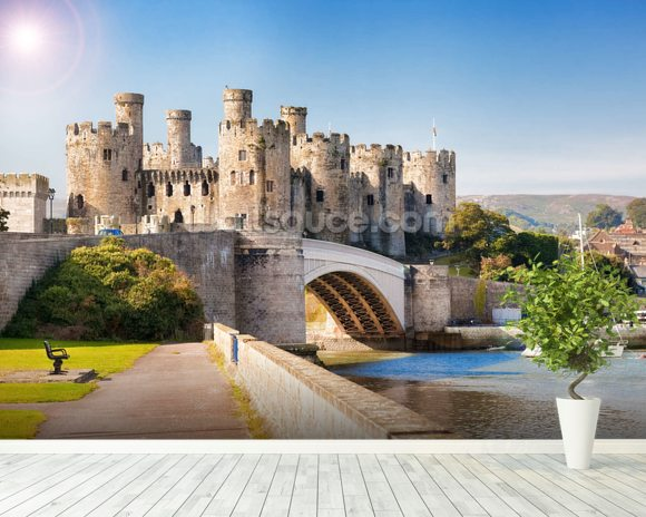 Conwy castle wales wallpaper wall mural wallsauce for Castle mural wallpaper