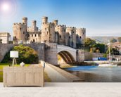 Conwy Castle, Wales wallpaper mural living room preview