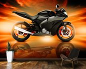 Motorcycle Skyline Horizon wall mural kitchen preview