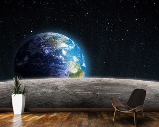 Rising Earth from the Moon Wall Mural Wall Murals Wallpaper