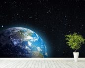 Rising Earth from the Moon wall mural in-room view