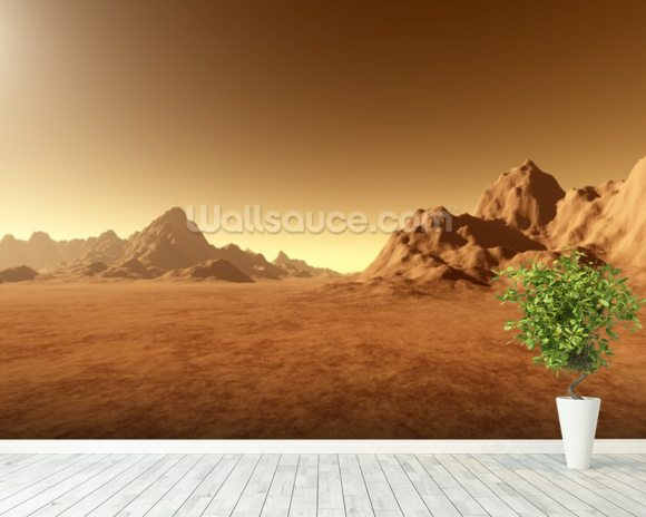 Mars Surface mural wallpaper room setting