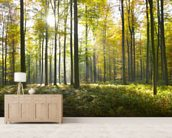 Sunny Forest wallpaper mural living room preview