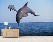 Flying Dolphins wallpaper mural living room preview