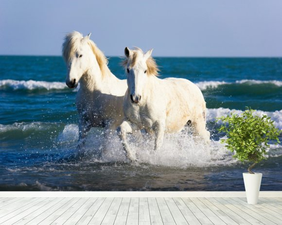Camargue Horses mural wallpaper room setting