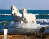Camargue Horses mural wallpaper kitchen preview