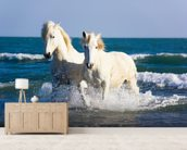 Camargue Horses mural wallpaper living room preview