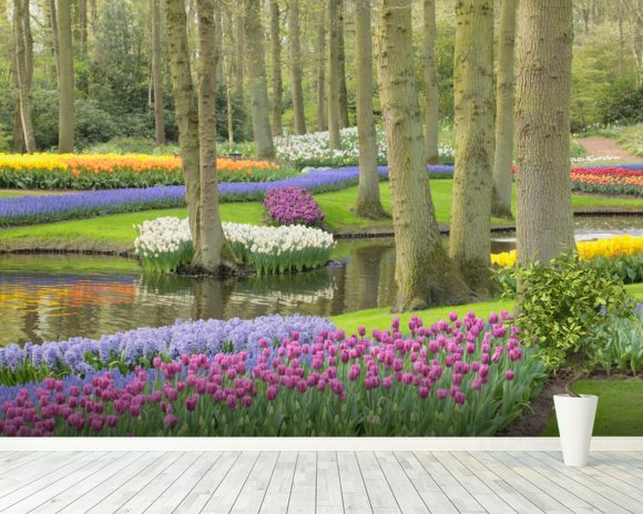 Keukenhof Flowers Gardens wallpaper mural room setting