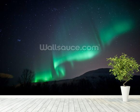 Aurora Borealis wallpaper mural room setting