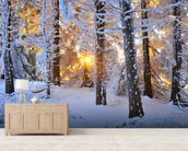 Snow Covered Trees wall mural living room preview