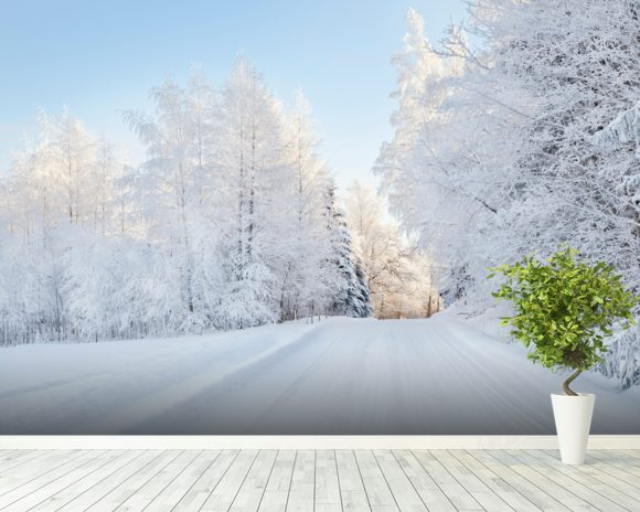 Snowy Trees mural wallpaper room setting