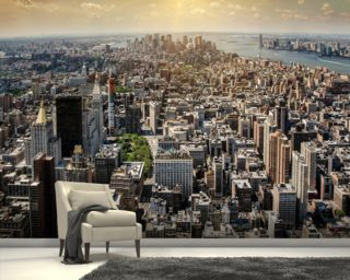 New York from Above wall mural