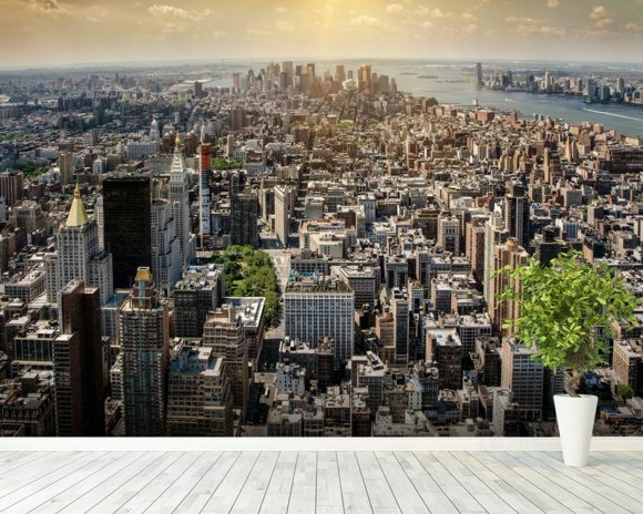 New York from Above wall mural room setting