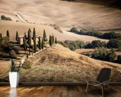 Farmhouse Tuscany wall mural kitchen preview