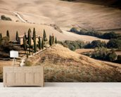 Farmhouse Tuscany wall mural living room preview