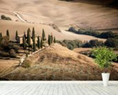 Farmhouse Tuscany wall mural in-room view