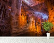 Vshalom Stalactite Cave Israel mural wallpaper in-room view