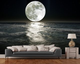 Space wallpaper wall murals wallsauce for Earth rising wall mural