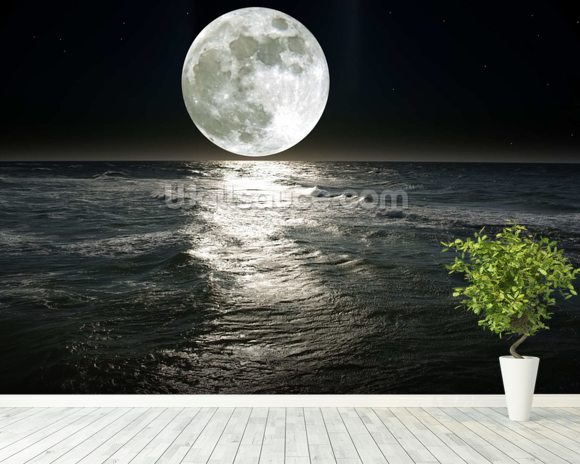 Moon wall mural room setting