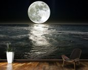 Moon wall mural kitchen preview