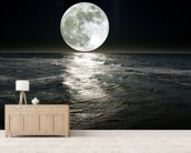 Moon wall mural living room preview