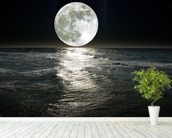 Moon wall mural in-room view