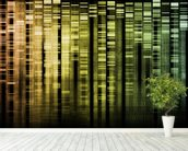 DNA Research wallpaper mural in-room view