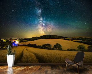A path to the stars Wallpaper Wall Murals