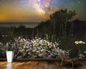 Daisies Under A Starlit Sky mural wallpaper kitchen preview